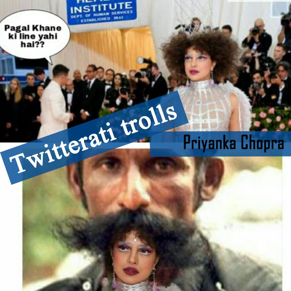 Priyanka Chopra Gets Brutually Trolled By Desi Twitterati For Her Latest Look In Met Gala 2019 !!